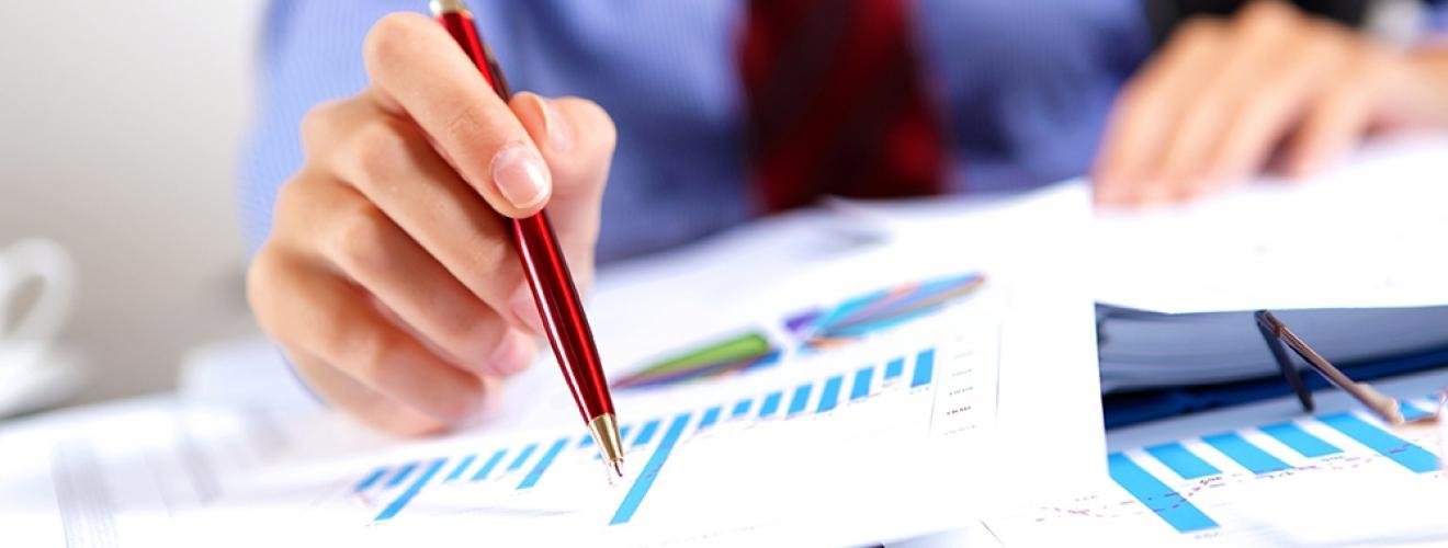 Levantamento, Revisão e Auditoria de Subsistemas de RH